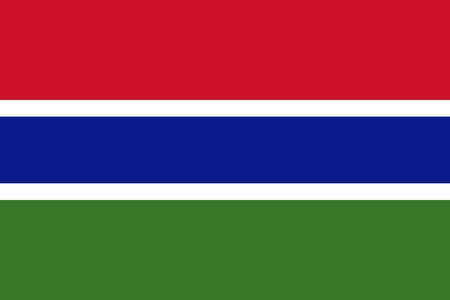Official Large Flat Flag of The Gambia Horizontal