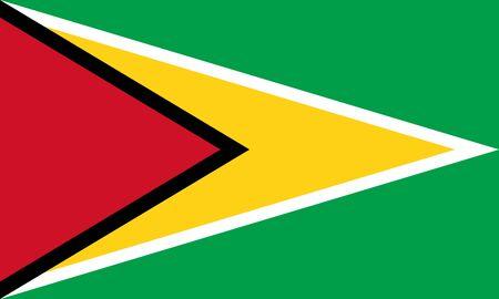 Official Large Flat Flag of Guyana Horizontal