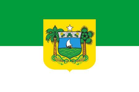 Official Large Flat Flag of Rio Grande do Norte Horizontal Imagens
