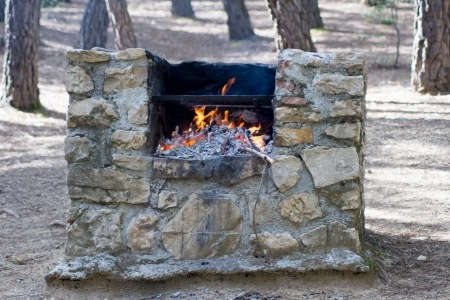 stone barbecue with a metal grate in the forest, lit the fire photo