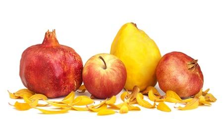 membrillo: Granadas secas, manzana, membrillo y hojas de granada sobre un fondo blanco. Foto de archivo