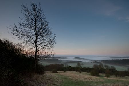 Looking down a hill towards some morning mist in the trees.  Taken just before dawn at Newlands Corner near Guildford in Surrey, UK. Stock Photo