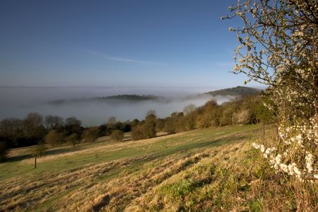 newlands: Looking down a hill towards some morning mist in the trees.  Taken early morning at Newlands Corner near Guildford in Surrey, UK. Stock Photo
