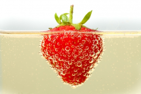 A fresh strawberry floating in a glass of champagne.  Lots of detail on the bubbles forming on the skin of the strawberry.