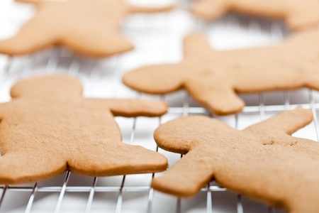 A shallow DOF image of a number of undecorated gingerbread men resting on a wire cooling rack. photo