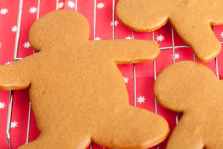 Some freshly baked home made gingerbread men on a cooling rack.  A red paper napkin with white stars forms the background. photo