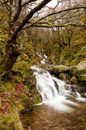 elan: A long exposure of a small waterfall in the Elan Valley, Wales.  Taken with a polarizer to emphasise the colours.