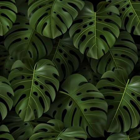 Botanical illustration with tropical green 3D leaves Monstera on dark