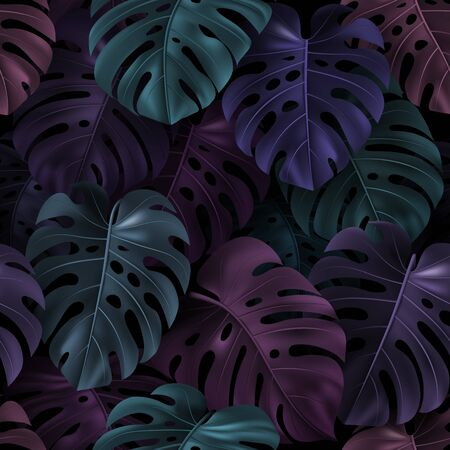 Tropical colorful leaves Monstera on dark