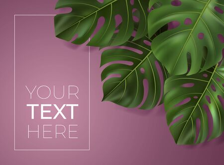 Vector poster with realistic green tropical leaves. Monstera leaf on pink background. Botanical illustration with copy space for your text. Template for banner, invitation card, ad, web design.