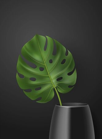 Vector realistic poster with 3D green tropical leaf in vase on dark Vectores