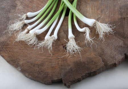 tender garlic as vegan condiment ingredient
