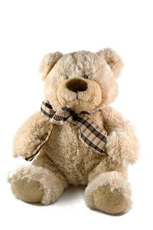 cute teddy bear over white photo