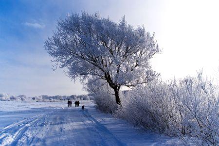 people walking along the snowy road photo