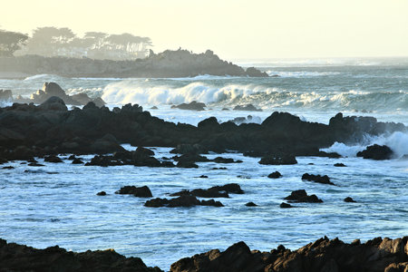Pacific Rocky Surf & Seashore, Pacific Grove, CA, Lovers Point, Ocean View