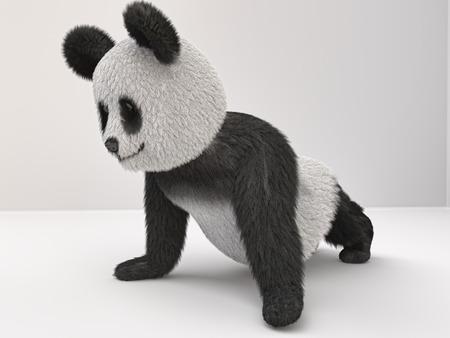 engaged: fluffy three-dimensional panda engaged pushups Stock Photo