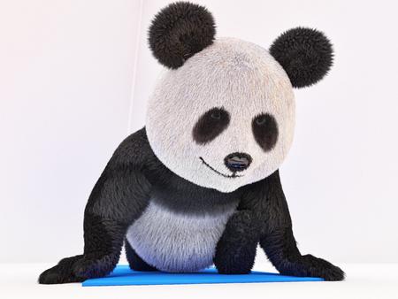 twine: panda sitting on a blue mat and doing twine stretching