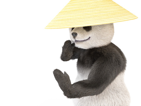 krav maga: wild aggressive kung fu panda asian straw hat standing bellicose posture with his hands up. animal engaged Chinese martial arts in hat collector rice. Illustration about cute dangerous fuzzy bear Stock Photo