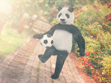 road paving: Panda football player. chasing soccer ball foot against backdrop Resort Thailand. juggling ball bear. character background paving stones road stretching into distance. edges with red tropical flowers.