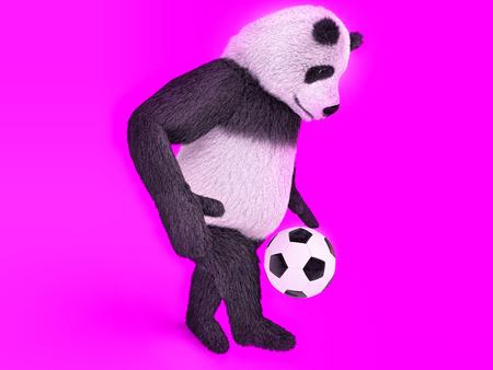 one panda: touching cute panda soccer player. chasing a soccer ball on foot on purple background. juggling ball bear. Stock Photo