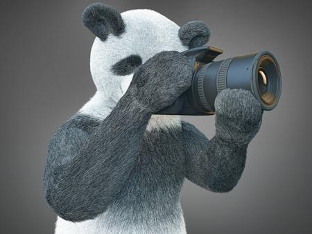 creative shot: panda taking photograph