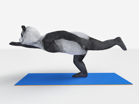 one panda: Panda practising yoga Stock Photo