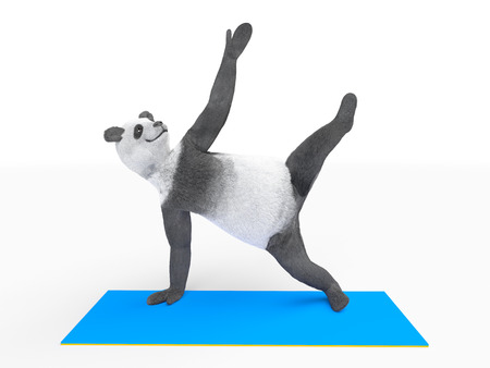 limbs: yogi practicing asana. Panda stands on the one hand and one foot, the other limbs are raised in the air