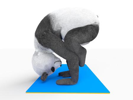 yogic: yogic asana posture on two hands upside down. legs located on elbows.