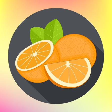 oranges flat vector icon. pomelo, clementine, kumquat, Ponkan, Tangelo, hassaku, Yuzu, mandarin, grapefruit pictogram.