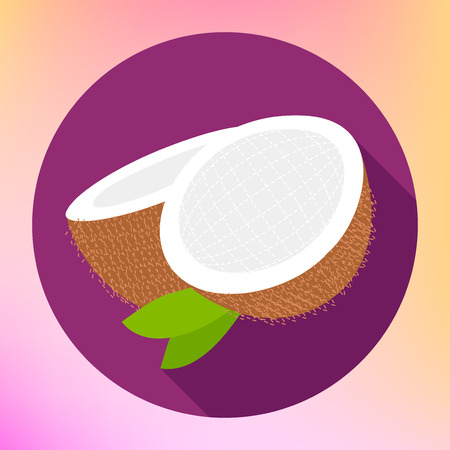 coco: Coconut sign. Coco food Flat Icon. Cokernut fruit vector pictogram. Cocoanut exotic fruit sign. Sliced coconut flat icon for web and mobile devices