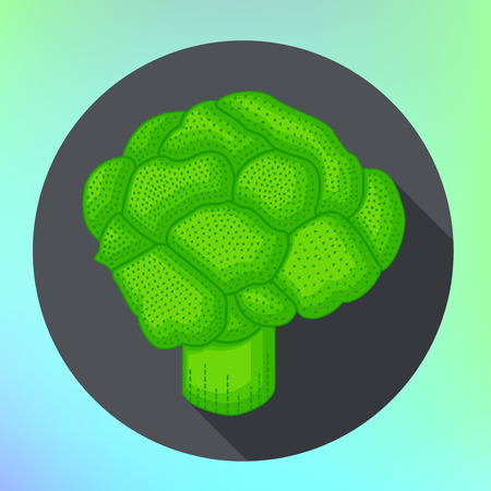 brocoli: Broccoli flat style pictogram. Food Icon for web and mobile application. Brocoli vector illustration on a white background. Flat design style. Broccoli vector icon in flat style. Isolated object.
