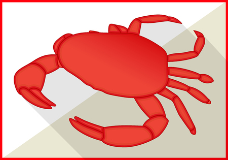 crustacean: Crab isolated on white background. Crustacean isometric flat vector 3d illustration