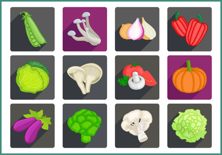 marrow: Vegetables flat modern icons set. Collection of various vegetarian ingredients pictograms.