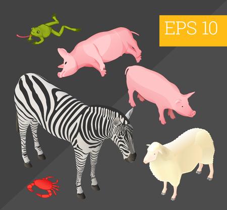 collection d'animaux avec zebra, cochons, grenouille, mouton et crabe eps10 illustration vectorielle