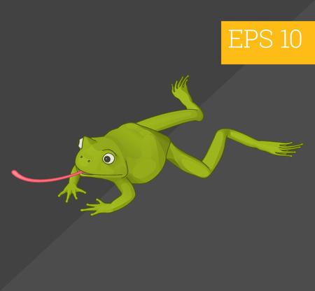 treefrog: frog toad eps10 vector 3d illustration. tropical fauna