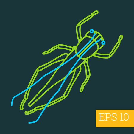 antennas: grasshopper linear vector illustration. insect outline icon. Illustration