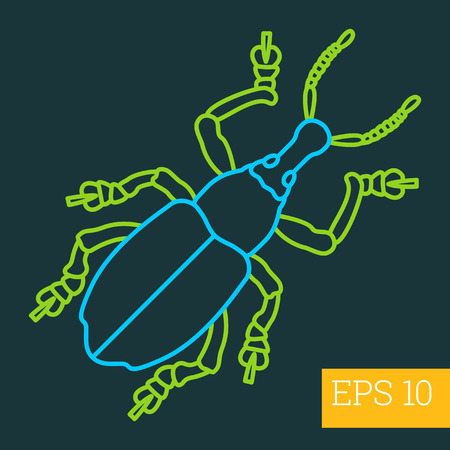 geotrupidae: capnodis linear vector illustration. insect outline icon.