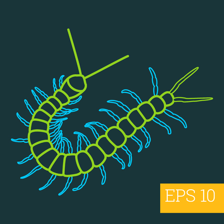 centipede linear vector illustration. insect outline icon.