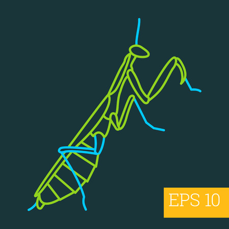 mantid: mantis linear vector illustration. insect outline icon.