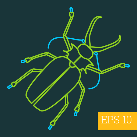 hexapoda: capnodis linear vector illustration. insect outline icon.