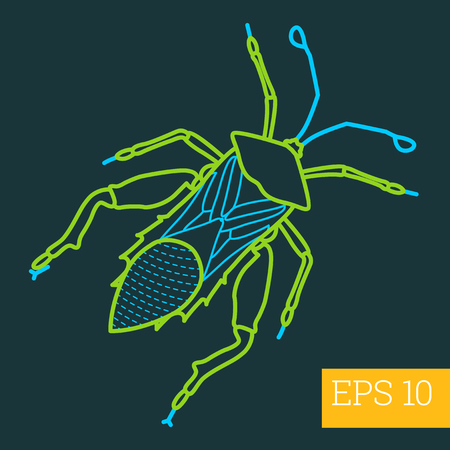 geotrupidae: gastrophysa linear vector illustration. insect outline icon. Illustration