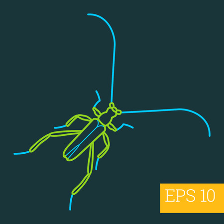 crawly: saperda linear vector illustration. insect outline icon.
