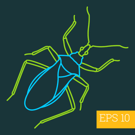 cerambycidae: dor-beetle, linear vector illustration. insect outline icon