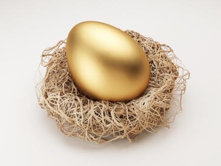 nest: Nest Egg