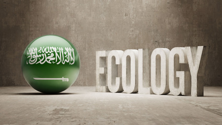 Saudi Arabia High Resolution Ecology  Concept photo