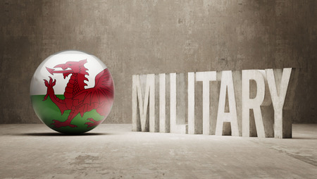 major force: Wales  Military Concept