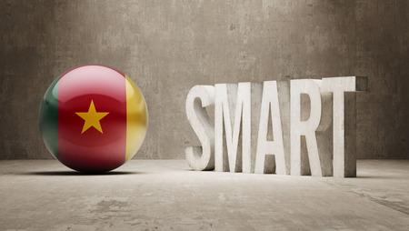 cameroon: Cameroon Smart Concept