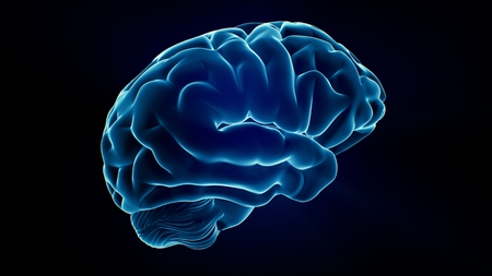 Xray Brain isolated on black background Stock Photo