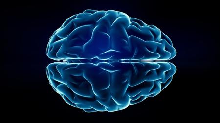dendrites: Xray Brain isolated on black background Stock Photo