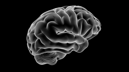 Xray Brain isolated on black background Фото со стока